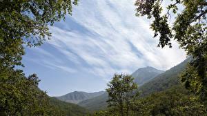 Фото Россия Камчатка Горы Леса Небо Природа