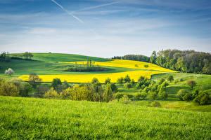 Картинки Пейзаж Поля Луга Трава