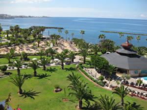 Фото Испания Курорты Берег Канары Пальмы Газон Tenerife
