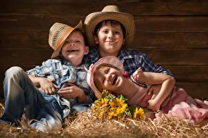 Фотография Подсолнухи Доски Трое 3 Мальчики Девочки Шляпа Улыбка Солома Ребёнок