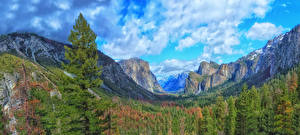 Картинка США Парки Горы Лес Пейзаж Йосемити Облачно Скала Природа