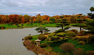 Фотографии Штаты Парки Пруд Осенние Чикаго город Кусты Деревья Дизайн Botanic Garden Природа