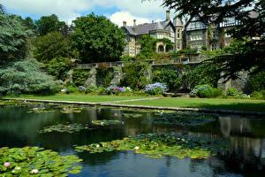 Картинки Великобритания Здания Пруд Водяные лилии Газон Кусты Ganllwyd Wales Природа