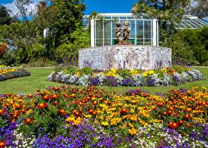 Картинки Великобритания Парк Скульптуры Бархатцы Уэльс Swansea Botanic Gardens Природа