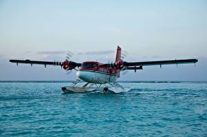 Фото Вода Самолеты Гидроплан