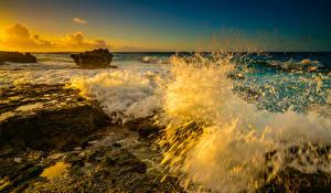 Картинки Волны Рассветы и закаты США Океан Гавайи Мох Брызги Oahu Природа
