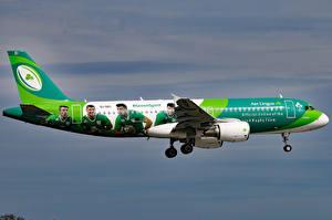 Фотография Airbus Самолеты Пассажирские Самолеты Полет A320-214 Авиация