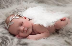 Картинка Ангелы Младенцы Спящий