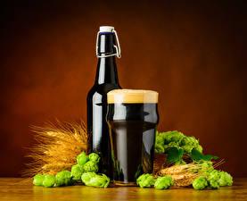 Обои Пиво Пшеница Хмель Бутылка Стакан Пена Колос Пища