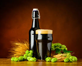 Обои Пиво Пшеница Хмель Бутылки Стакана Пене Колоски