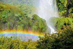 Фотографии Чили Парки Водопады Радуга Мох Кусты Conguillio National Park Salto El Leon waterfall Природа