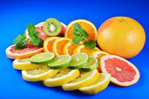Фотографии Цитрусовые Лимоны Апельсин Цветной фон Нарезанные продукты Еда