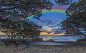 Фотографии Англия Побережье Рассвет и закат Радуга Скамейка Ветка Christchurch Природа