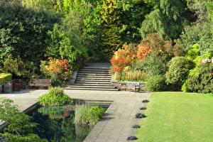 Обои Англия Сады Пруд Лондон Кусты Лестница Inverforth House Hill Garden Природа