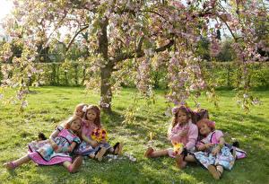 Фотография Германия Парки Цветущие деревья Кукла Девочка Траве Платья Grugapark Essen Природа