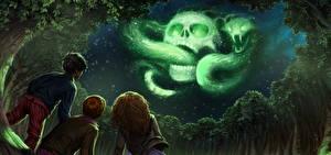 Обои для рабочего стола Гарри Поттер и Кубок огня Черепа Змея Магия Три Мальчишки Девочка Ночь Дерева Фильмы Фэнтези