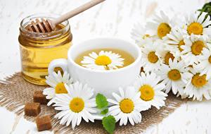 Фотография Мед Ромашки Чай Банка Чашка Еда Цветы