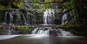 Фотографии Новая Зеландия Водопады Мох Purakaunui Falls