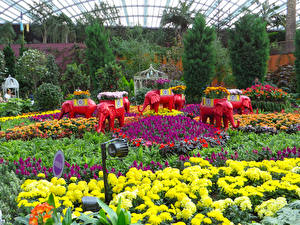 Фотография Сингапур Сады Скульптуры Слоны Хризантемы Gardens by the Bay Природа