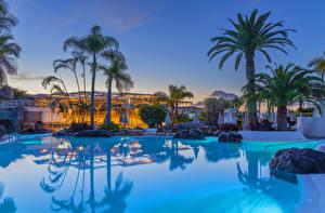 Картинки Испания Курорты Камень Вечер Канары Плавательный бассейн Пальм Playa Fanabe Города