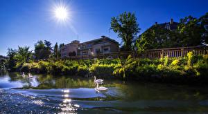 Фото Страсбург Франция Дома Реки Лебеди Ограда Солнце Кусты