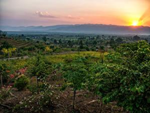 Картинки Рассветы и закаты Тропики Поля Red Mountain Estate Winery Myanmar