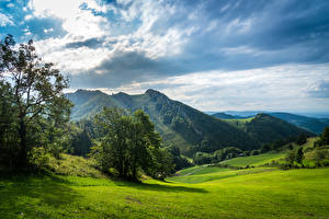 Фото Швейцария Горы Луга Облака Деревья