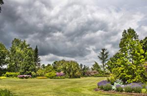 Фотография Штаты Сады Газон Деревья Tower Hill Botanical Garden