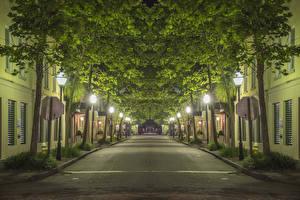 Фотография США Дома Аллея Ночные Уличные фонари Деревья Улица Charleston Города