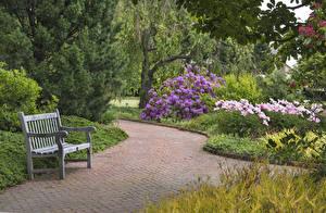 Фотографии США Парки Скамейка Tower Hill Botanical Garden Природа