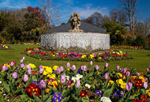 Фотографии Великобритания Парки Скульптуры Тюльпаны Первоцвет Swansea Botanic Gardens Wales Природа