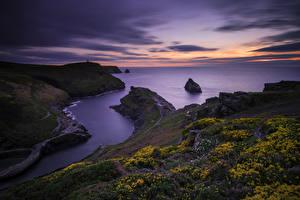Обои Великобритания Рассветы и закаты Побережье Пейзаж Крокусы Boscastle North Cornwall Природа