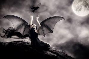 Фото Вампиры Вороны Готические Крылья Ночные Луна Черно белое Фэнтези