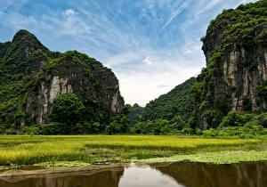 Картинки Вьетнам Пруд Трава Утес Ninh Binh Природа