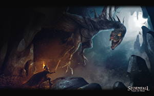 Фотография Воины Драконы Stormfall: Age of War Фэнтези