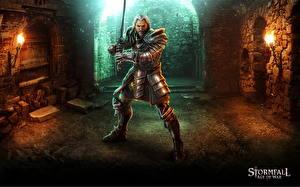 Фотография Воители Stormfall: Age of War Броня Мечи Фэнтези