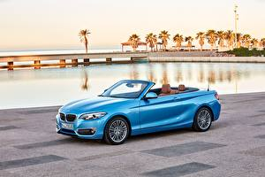 Фотография BMW Голубой Кабриолет Металлик 2017 230i Cabrio Luxury Line Worldwide Автомобили