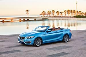 Фотография BMW Голубая Кабриолет Металлик 2017 230i Cabrio Luxury Line Worldwide машина