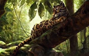 Фотография Большие кошки Леопарды Рисованные Ветвь Ствол дерева Животные