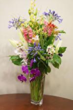 Фотографии Букеты Орхидеи Стена Ваза Цветы