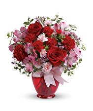 Обои Букеты Розы Гвоздики Альстрёмерия Белый фон Ваза
