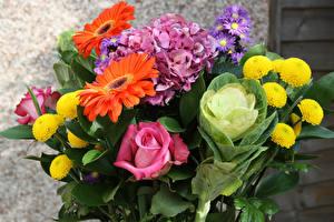 Картинки Букеты Розы Гортензия Гербера Бархатцы Цветы