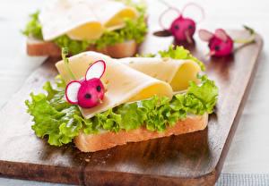 Картинки Бутерброды Редис Сыры Хлеб Разделочная доска