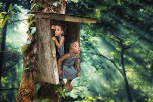 Фотография Оригинальные Леса Смешная Девочка Вдвоем Платье Дети