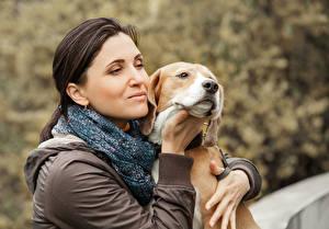 Обои Собака Шатенки Бигля девушка
