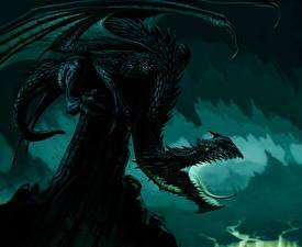 Фотография Драконы Крылья Злость Фэнтези