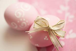 Фотографии Пасха Вблизи Яйца Бантик Розовый
