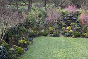 Фотография Англия Сады Весенние Пагоды Кусты Газон Walsall Garden
