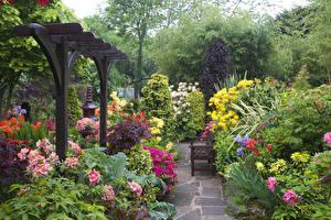 Фотографии Англия Сады Кусты Скамья Walsall Garden Природа