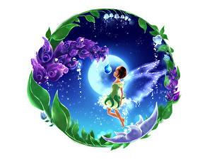 Картинка Феи Колокольчики - Цветы Крылья Фэнтези